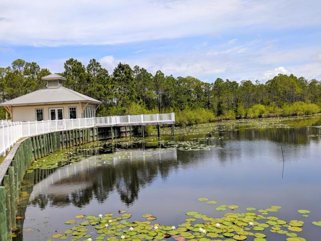 231 SOMERSET BRIDGE UNIT 1111 SANTA ROSA BEACH FL